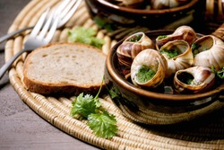 Escargots de Bourgogne - Snails with herbs butter, gourmet dish, in two traditional ceramic pans with coriander and bread on straw napkin. Close up