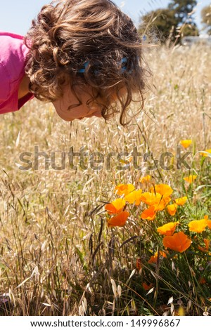 Eschscholzia californica is a species of flowering plant in the family Papaveraceae, native to the United States and Mexico, and the official state flower of California.