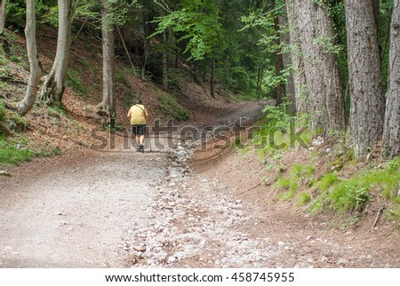 escursionista sulla strada forestale italia Foto d'archivio ©
