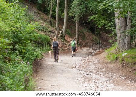 escursionisti in strada forestale italia Foto d'archivio ©