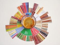 Espresso coffee shot on taster's flavor wheel. Top view. White background