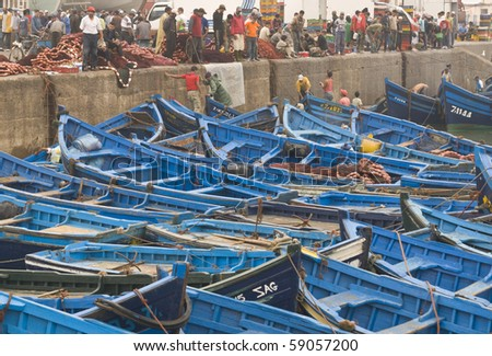 ESSAOUIRA, MOROCCO - AUGUST 29: Fish being offloaded from a fleet of small blue inshore fishing boats on August 29, 2009 in the fishing village of Essaouira, Morocco.