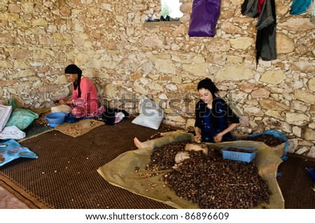 ESSAOUIRA, MOROCCO-AUGUST, 7: women work in a cooperative for the manufacturing of argan fruits in Essaouira, Morocco,  august 7, 2011. Only women work in these cooperatives