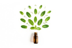 Essential oil and green mint leaves on white background. Medicinal herbs. Flat lay. Top view.
