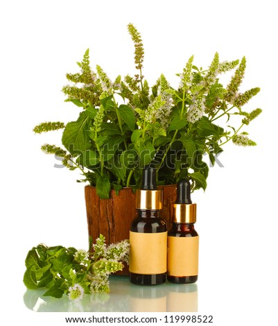 Essential oil and mint isolated on white - stock photo