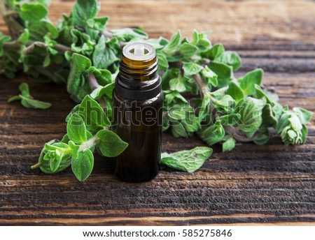 Essential oil bottle of oregano herb with fresh oregano leaves #585275846