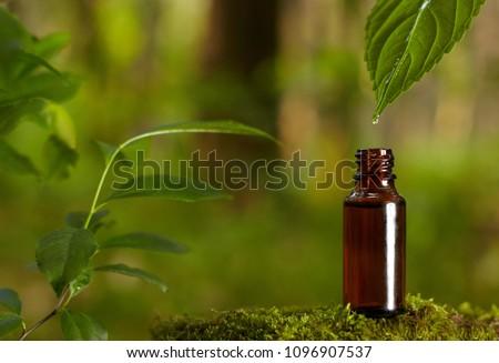 Essential oil falling from green leaf. Organic bio alternative medicine, brown bottle.