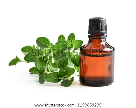 Essential oil of oregano in dark bottles with fresh  oregano leaves isolated on white background #1159659295
