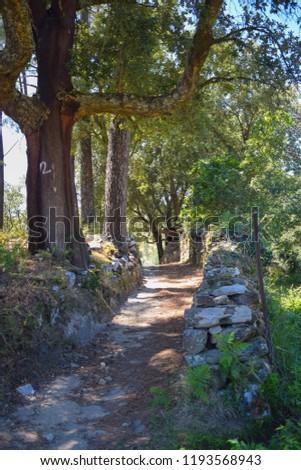 Ester de Cima is a village in the parish of Ester, municipality of Castro Daire, Viseu, Portugal