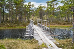 Estonian swamp wooden hiking trail. Bridge in middle of the swamp. Floating bridge. Models walking trail. Cloudy and windy day. Typical Estonian and Finland nature. Swamp lakes everywhere.