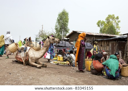 ETHIOPIA-AUGUST 1: weekly Bati Market, brings together various ethnic groups such as Afar, Oromo and Amara to sell their goods and animals, August 1, 2011 in Bati, Ethiopia.