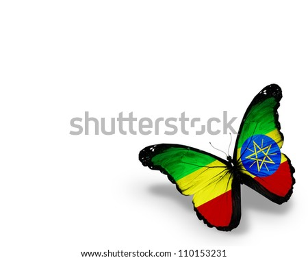 Ethiopia flag butterfly, isolated on white background