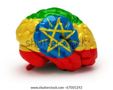 Ethiopian flag on Human brain