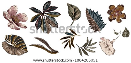 Ethnic flower and vintage leaves folkloric set isolated for texture seamless pattern, with peony floral, particular folk ethnic leaf colorful vintage and other flowers set on white background.
