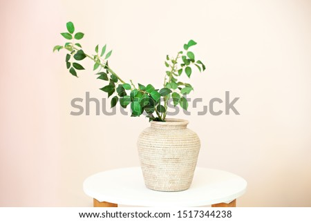 Eucalyptus twigs with fresh leaves in vases on the table. Flowers in a vase at home. Green twigs in straw vase on white wooden table with copy space, modern elegance of home decor. Scandinavia, space