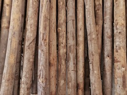 Eucalyptus wood is a fast-growing hardwood. It is eco-friendly building material. Larger poles can be utilized for construction support structures, smaller poles are perfect for fences,decorative trim