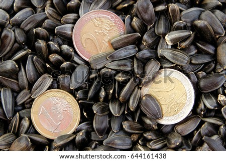 Euro coins among sunflower seeds. Concept - small business in Europe.