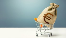 Euro money bag on a shopping cart. Profits and super profits. Loans and microloans. Minimum living wage. Consumer basket. Business and trade concept. Public procurement, budgeting. Economic bubbles
