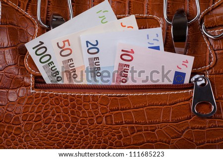 Euro Money Banknotes in the Bag