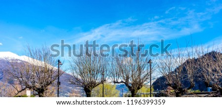 Europe, Italy, Bellagio, Lake Como, BARE TREES BY ROAD AGAINST BLUE SKY and snow mountain #1196399359