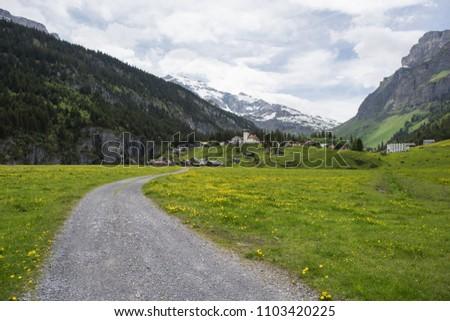 european alps, urnerboden 1383m. biggest alp in switzerland #1103420225