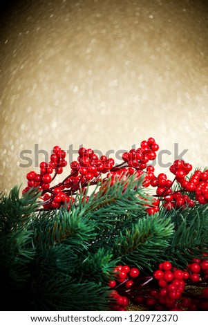 european holly anf fir-tree on golden background, shallow DOF