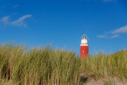 European marram (beach grass) from the dunes at Dutch north sea coast with blurred red lighthouse tower, The Eierland Lighthouse under blue sky as background, Texel Island, North Holland, Netherlands.