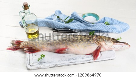 European pike. Northern Pike ( Esox Lucius ) on white wooden background #1209864970