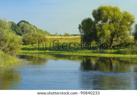 European Summer River Landscape (Russia)