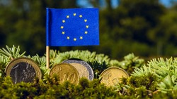European Union flag with euro coins amid moss,recovery fund business,finance and economy concept,macro close up