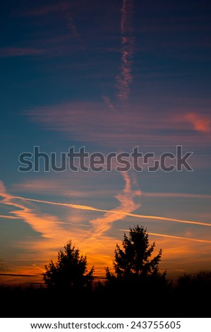 Evening aeroplane contrails sunset light on dark blue sky and tress silhouette, twilight in Poland, Europe, Nobody, vertical orientation.