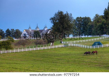 Evening at a horse farm - stock photo