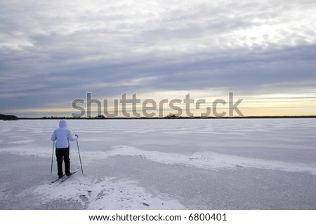 Evening cross-country winter skiing on the lake?s ice in Voyager National Park - stock photo