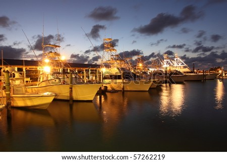 Evening in a marina in Florida