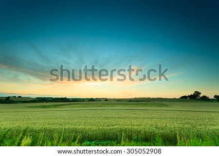 Evening landscape. Beautiful sunset or sunrise over green summer field meadow with dramatic red sky, #305052908
