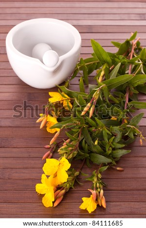 Evening primrose with mortar and pestle on wooden background