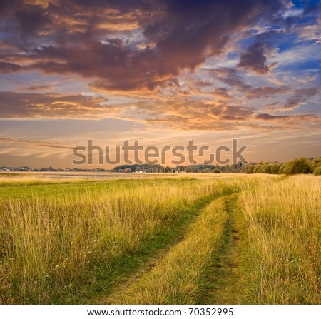 evening rural landscape road among a fields