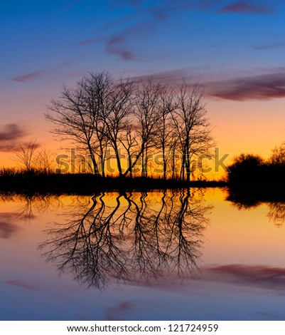 Evening scene wit leafless trees on sunset background  near lake