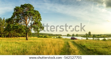 evening summer landscape with lush pine tree on the banks of river and dirt road, Russia, Ural #562127701