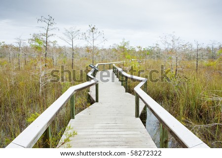 Everglades National Park, Florida, USA