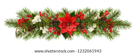 Evergreen twigs of Christmas tree, poinsettia flower, berries and holiday decorations in a garland isolated on white. Flat lay. Top view. #1232061943