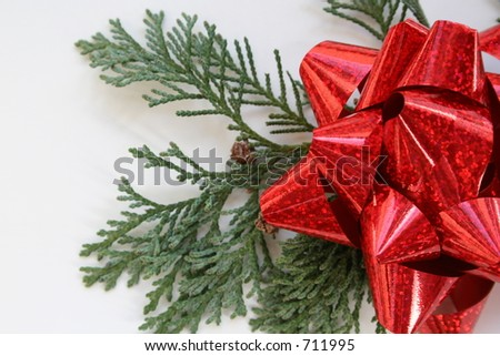 Evergreens and Red Bow