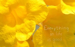 Everything in life is good. Life must face many things but believe that everything we have faced is good
