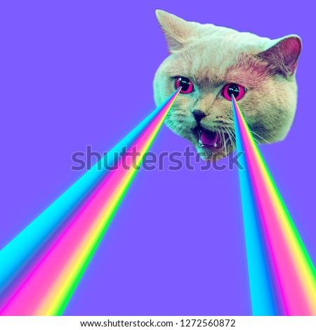 Evil Cat with rainbow lasers from eyes. Minimal collage fashion concept #1272560872