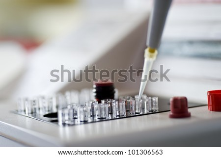 examination of the samples in the laboratory