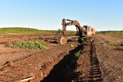 Excavator digging drainage ditch in peat extraction site. Drainage of peat bogs and destruction of trees. Drilling on bog for oil exploration. Mining peatlands.