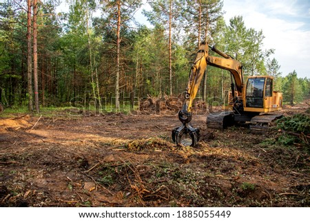 Excavator Grapple during clearing forest for new development. Tracked Backhoe with forest clamp for forestry work. Tracked timber Crane and Hydraulic Grab log Loader. ストックフォト ©