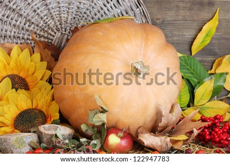 Excellent autumn still life with pumpkin on straw on wooden background