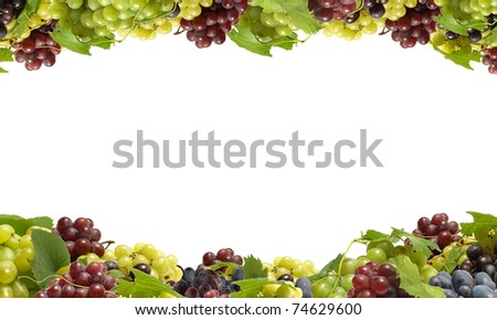 Excellent grades of grapes