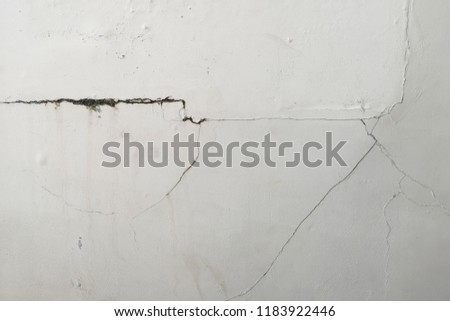 Excessive moisture can cause mold and peeling paint wall , such as rainwater leaks or water leaks . #1183922446